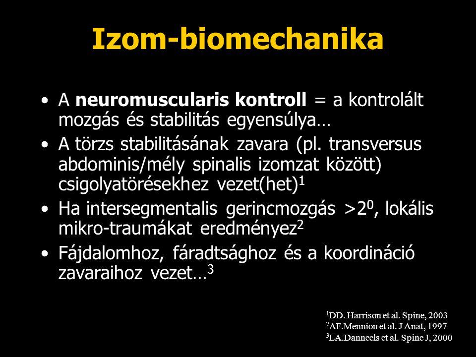 Izom-biomechanika A neuromuscularis kontroll = a kontrolált mozgás és stabilitás egyensúlya…