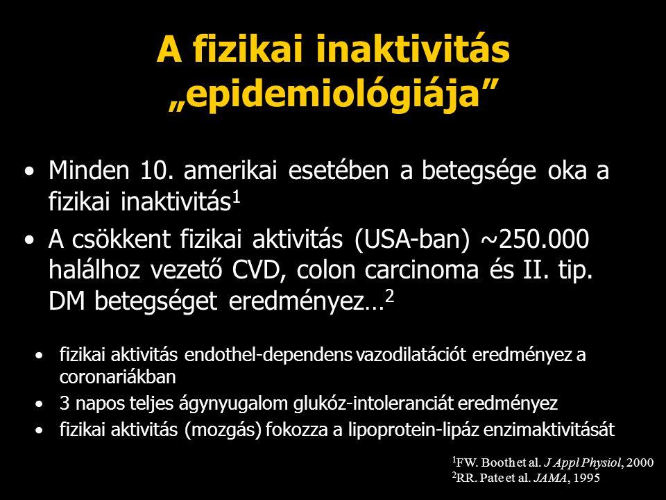 """A fizikai inaktivitás """"epidemiológiája"""