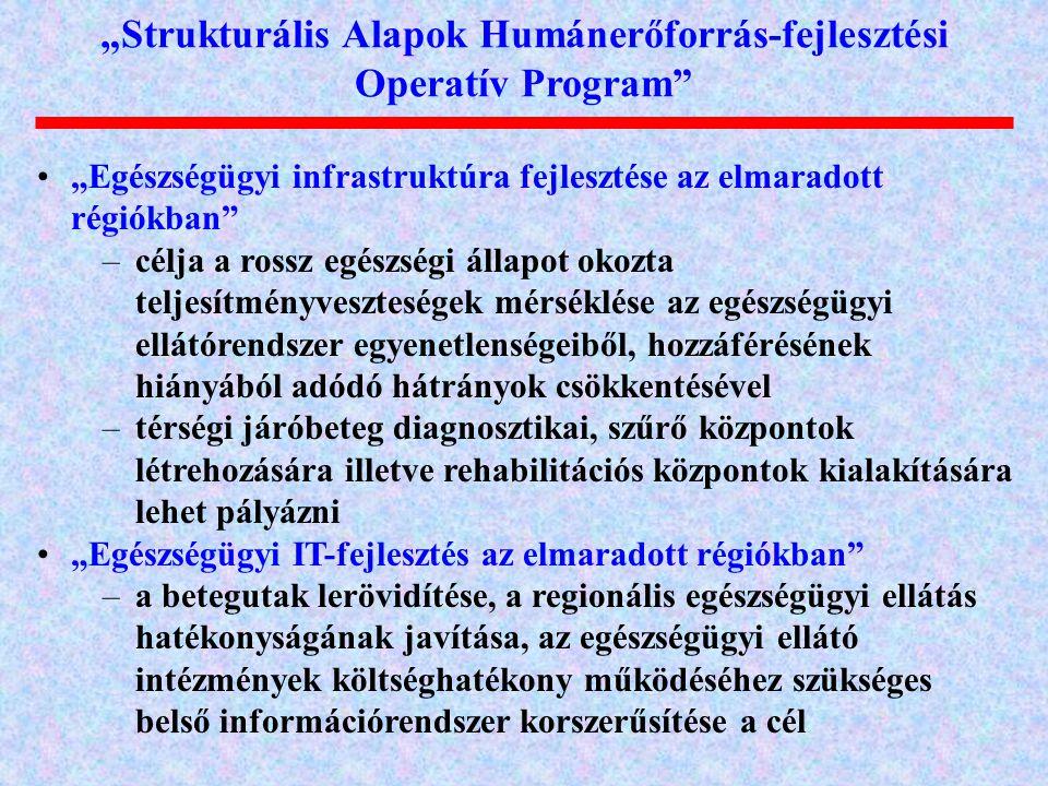 """""""Strukturális Alapok Humánerőforrás-fejlesztési Operatív Program"""