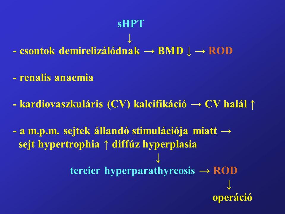 sHPT ↓ - csontok demirelizálódnak → BMD ↓ → ROD - renalis anaemia - kardiovaszkuláris (CV) kalcifikáció → CV halál ↑ - a m.p.m.
