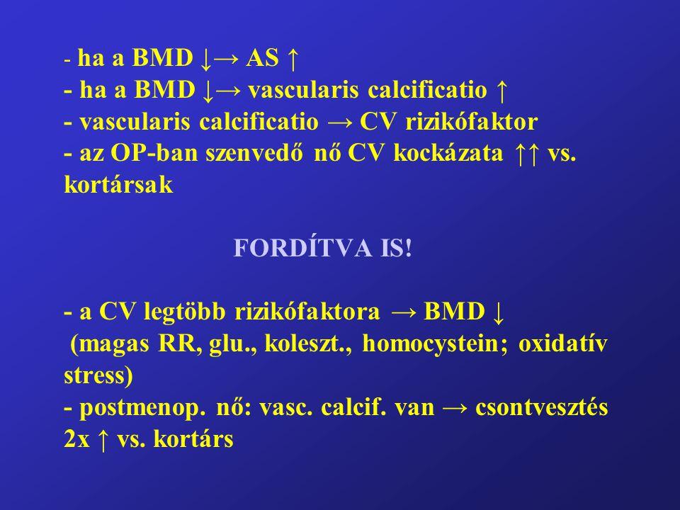 ha a BMD ↓→ AS ↑ - ha a BMD ↓→ vascularis calcificatio ↑ - vascularis calcificatio → CV rizikófaktor - az OP-ban szenvedő nő CV kockázata ↑↑ vs.