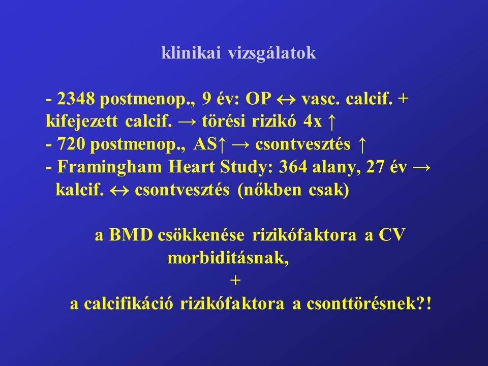 klinikai vizsgálatok - 2348 postmenop. , 9 év: OP  vasc. calcif