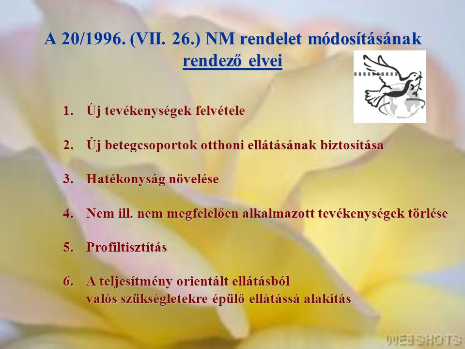 A 20/1996. (VII. 26.) NM rendelet módosításának rendező elvei