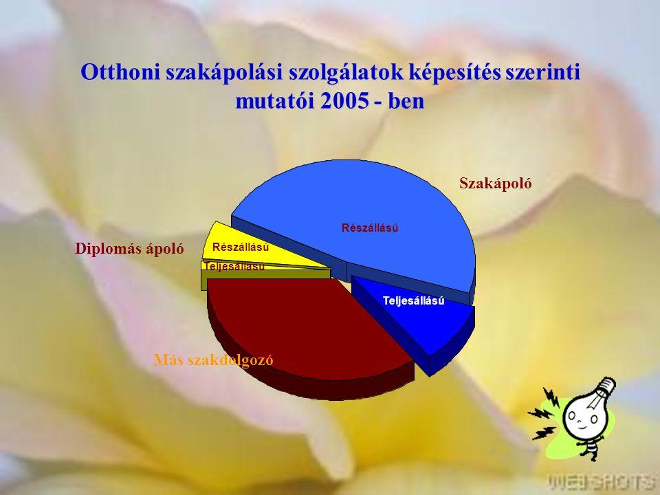 Otthoni szakápolási szolgálatok képesítés szerinti mutatói 2005 - ben