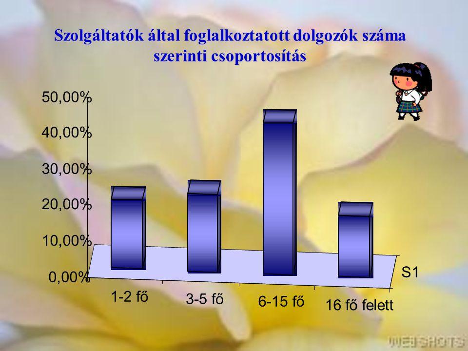 Szolgáltatók által foglalkoztatott dolgozók száma szerinti csoportosítás