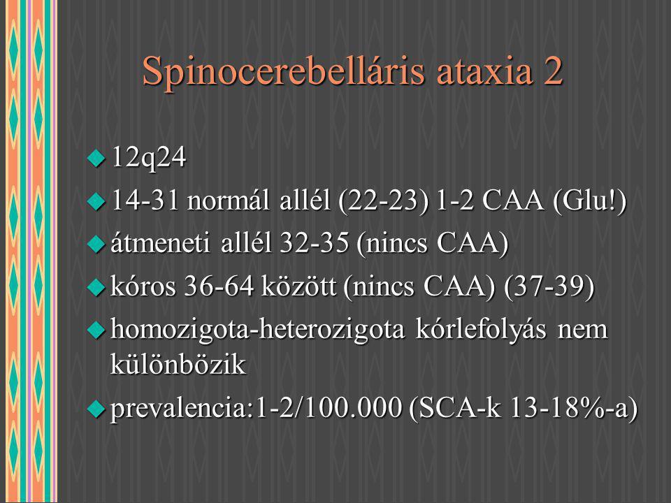 Spinocerebelláris ataxia 2