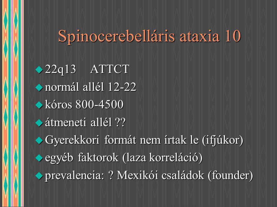 Spinocerebelláris ataxia 10