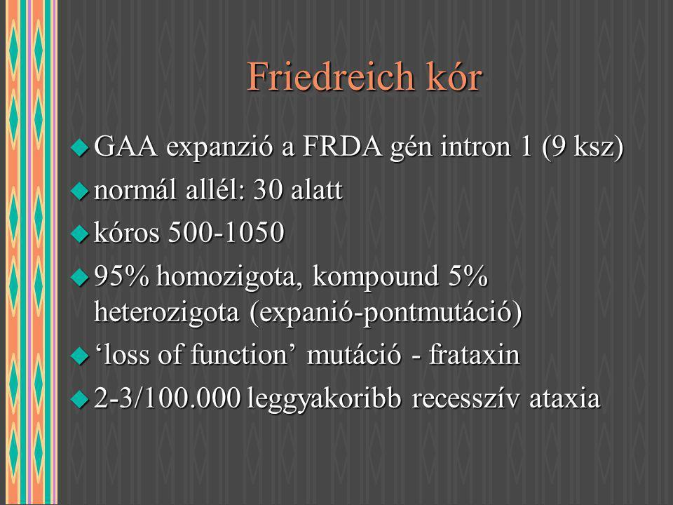 Friedreich kór GAA expanzió a FRDA gén intron 1 (9 ksz)
