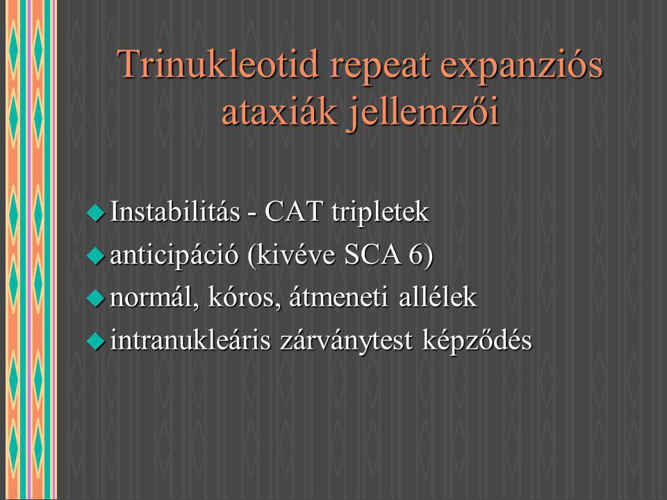 Trinukleotid repeat expanziós ataxiák jellemzői