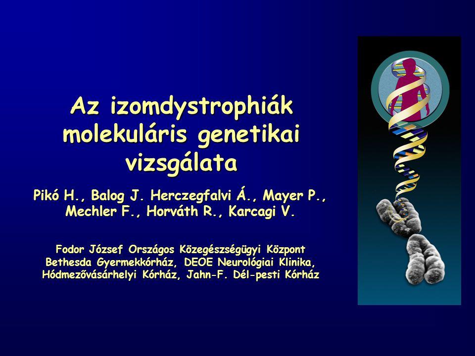 Az izomdystrophiák molekuláris genetikai vizsgálata