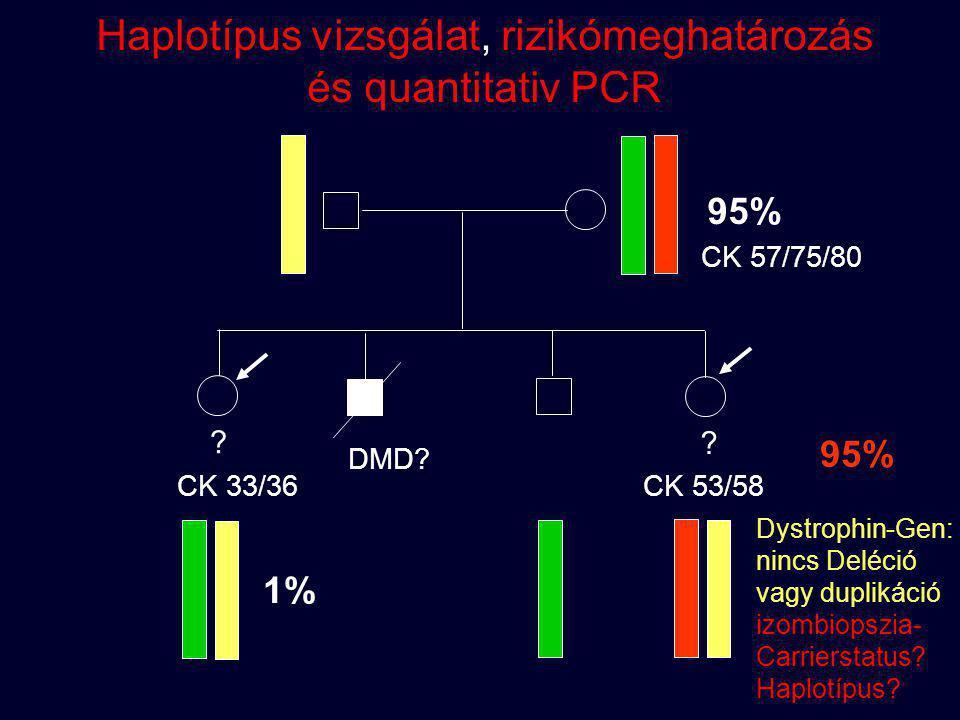 Haplotípus vizsgálat, rizikómeghatározás és quantitativ PCR
