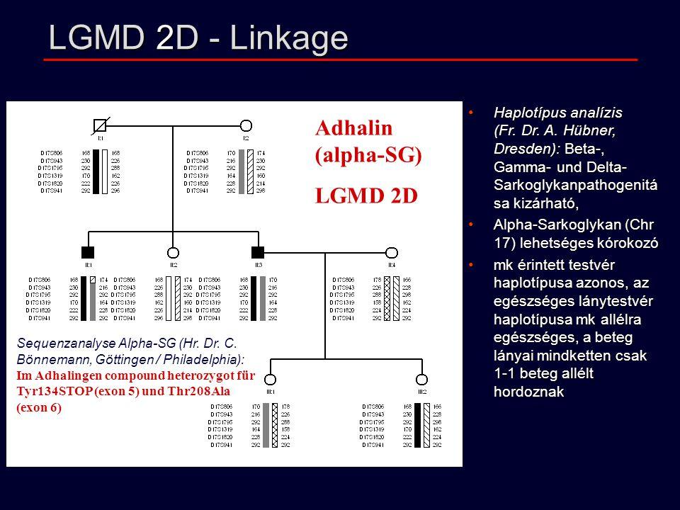 LGMD 2D - Linkage Adhalin (alpha-SG) LGMD 2D