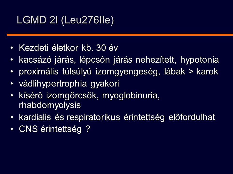 LGMD 2I (Leu276Ile) Kezdeti életkor kb. 30 év