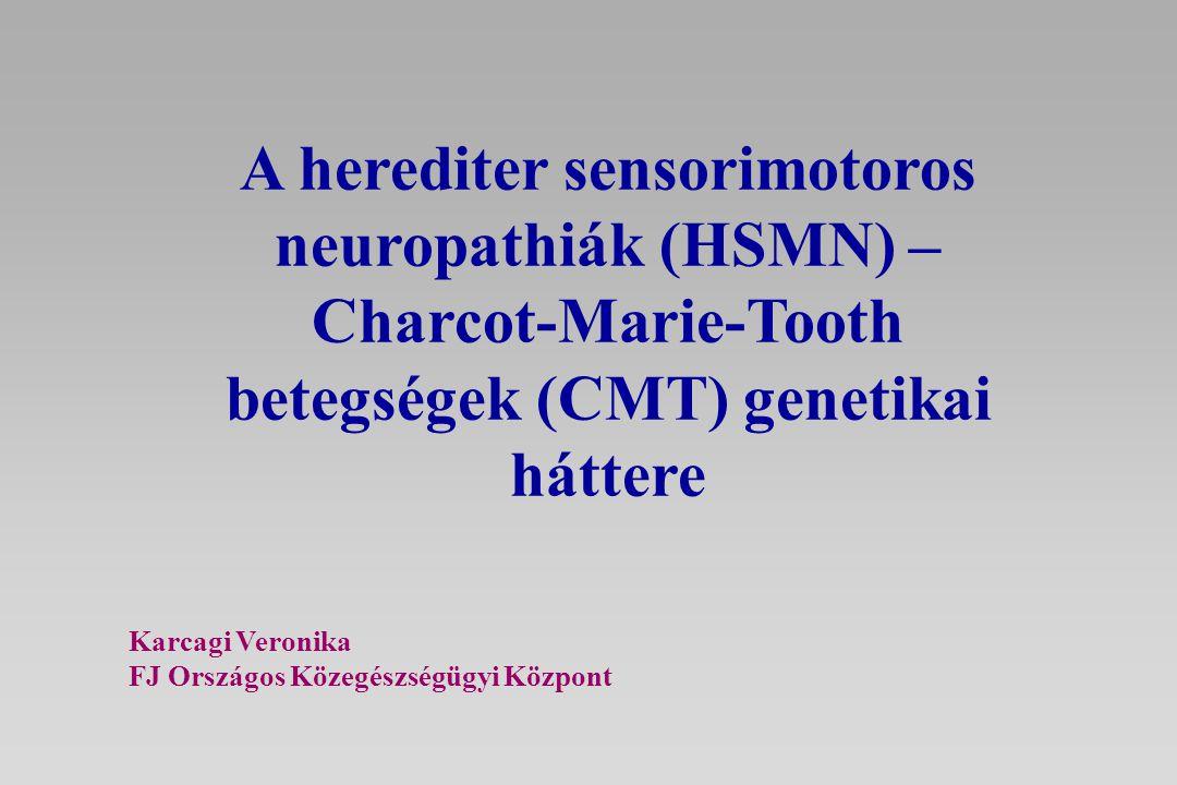 A herediter sensorimotoros neuropathiák (HSMN) – Charcot-Marie-Tooth betegségek (CMT) genetikai háttere
