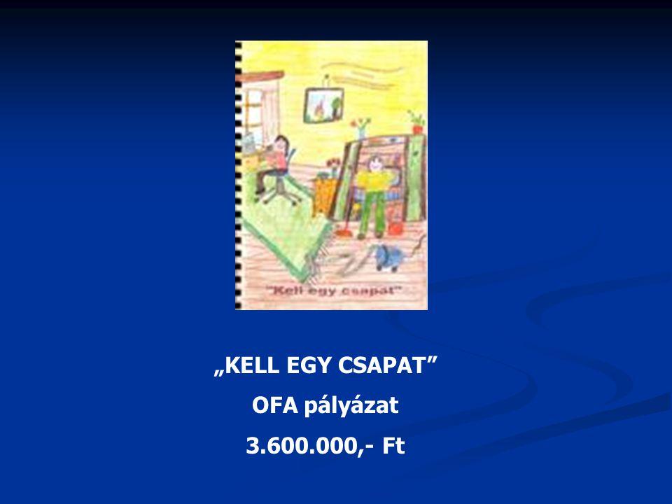 """""""KELL EGY CSAPAT OFA pályázat 3.600.000,- Ft"""