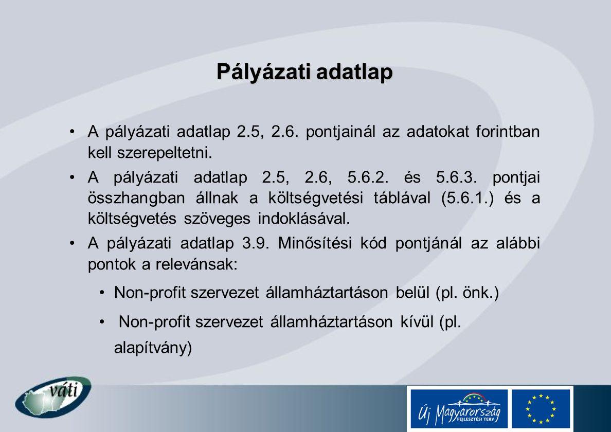 Pályázati adatlap A pályázati adatlap 2.5, 2.6. pontjainál az adatokat forintban kell szerepeltetni.