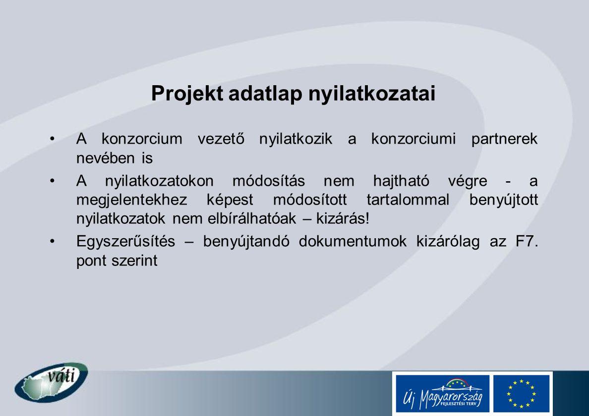 Projekt adatlap nyilatkozatai