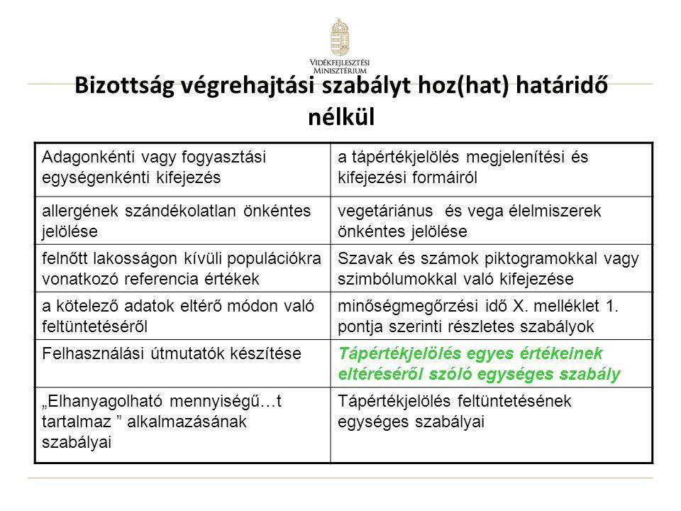 Bizottság végrehajtási szabályt hoz(hat) határidő nélkül