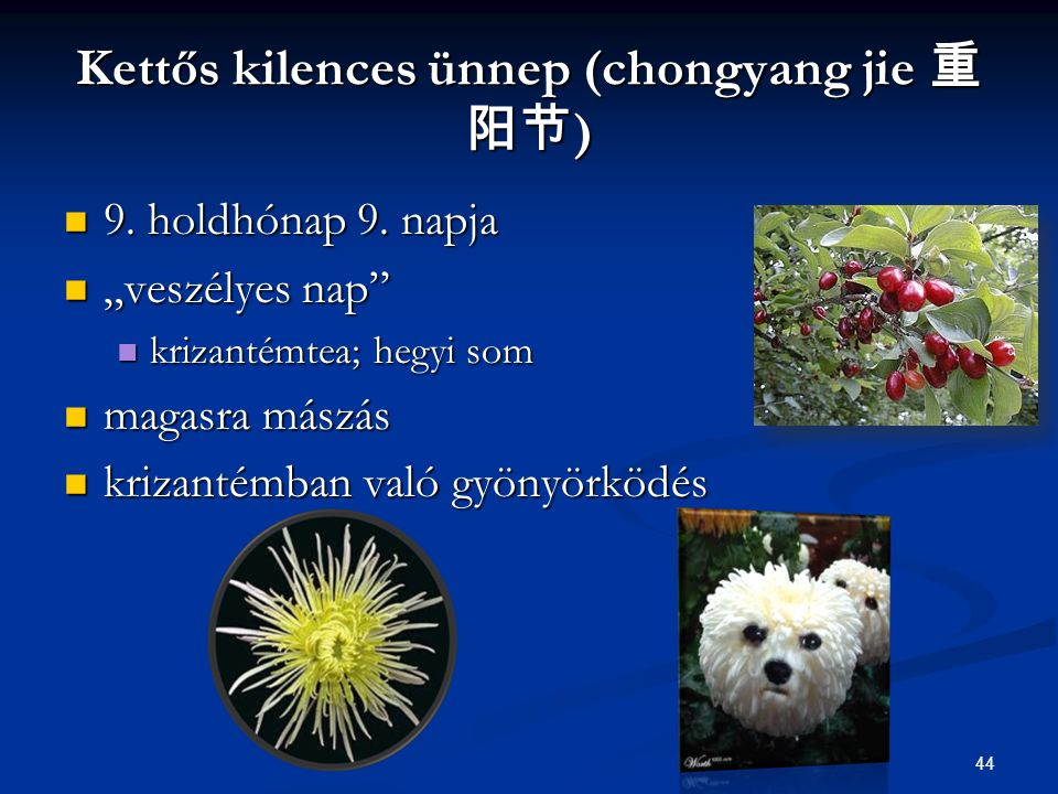 Kettős kilences ünnep (chongyang jie 重阳节)