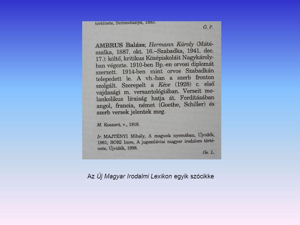 Az Új Magyar Irodalmi Lexikon egyik szócikke
