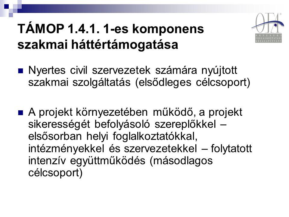 TÁMOP 1.4.1. 1-es komponens szakmai háttértámogatása