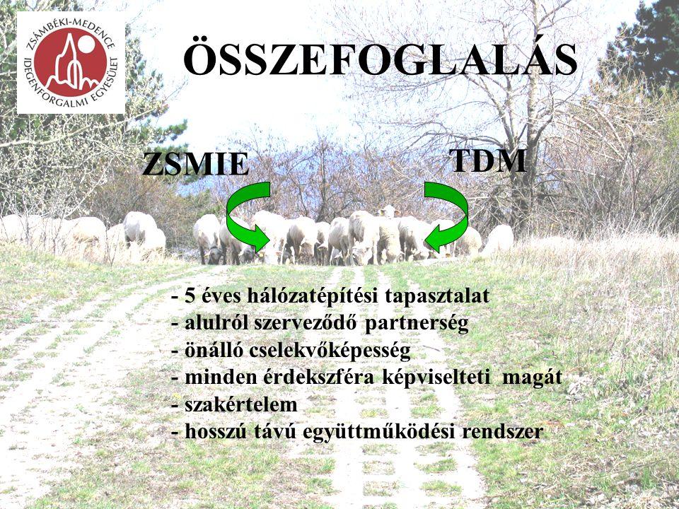 ÖSSZEFOGLALÁS TDM ZSMIE - 5 éves hálózatépítési tapasztalat