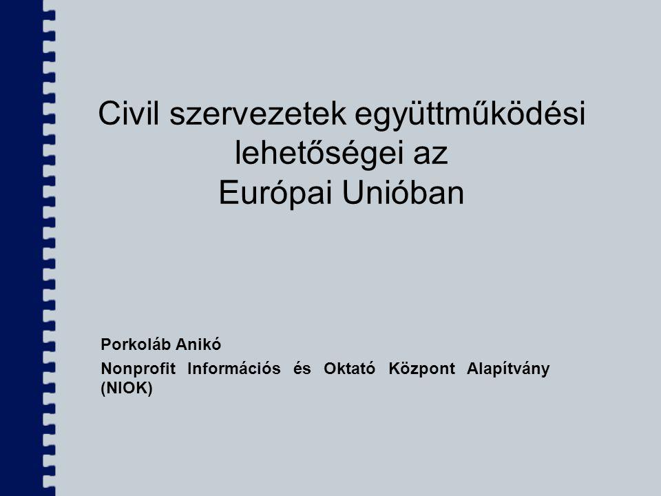 Civil szervezetek együttműködési lehetőségei az Európai Unióban