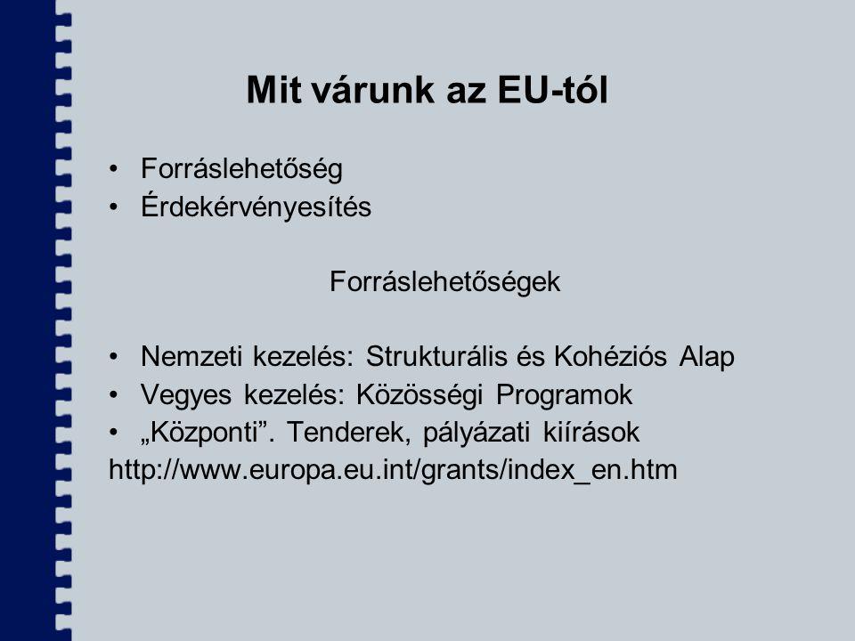 Mit várunk az EU-tól Forráslehetőség Érdekérvényesítés