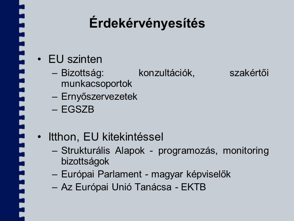 Érdekérvényesítés EU szinten Itthon, EU kitekintéssel