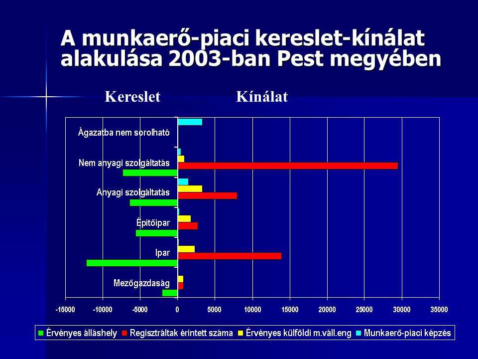 A munkaerő-piaci kereslet-kínálat alakulása 2003-ban Pest megyében