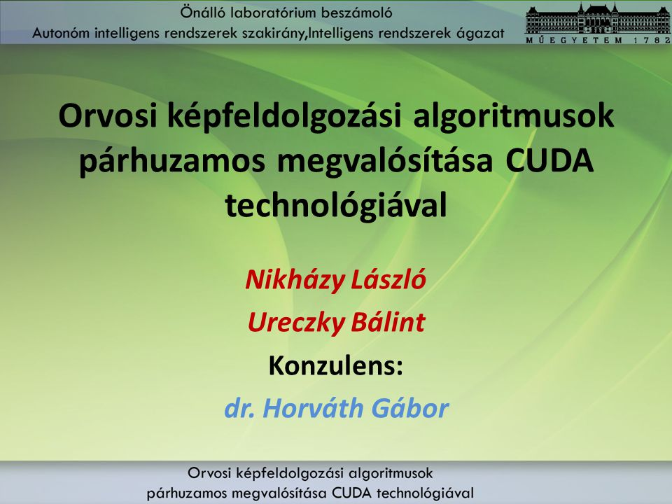 Nikházy László Ureczky Bálint Konzulens: dr. Horváth Gábor