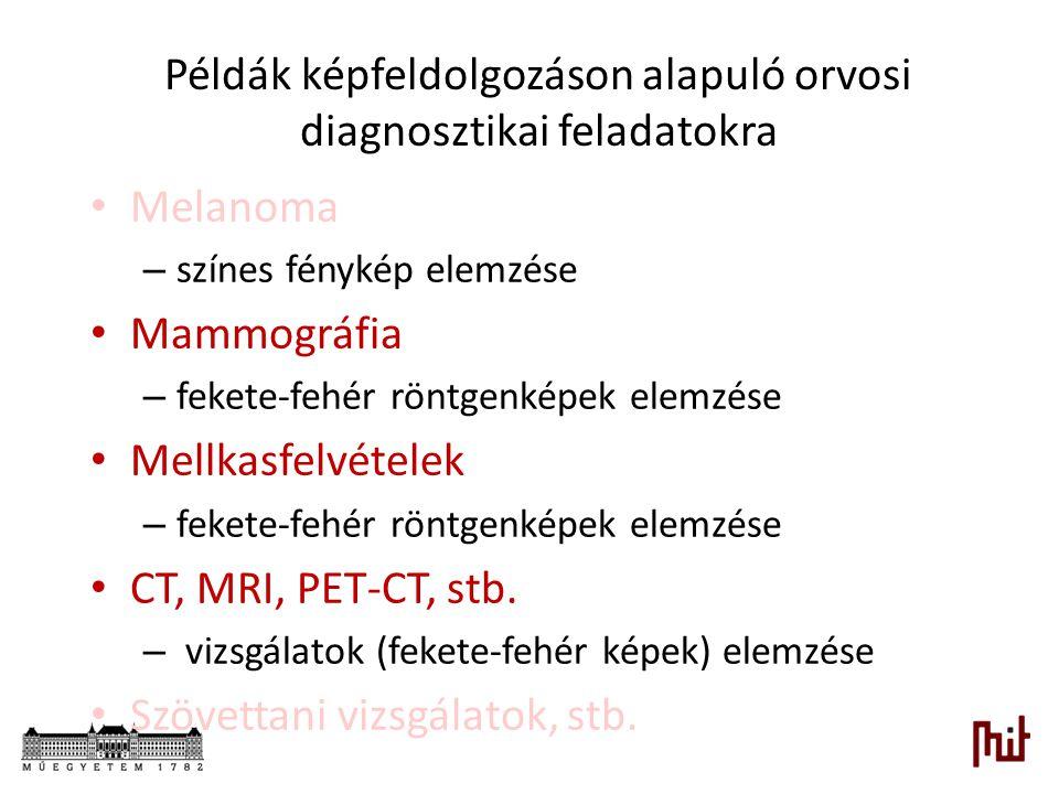 Példák képfeldolgozáson alapuló orvosi diagnosztikai feladatokra