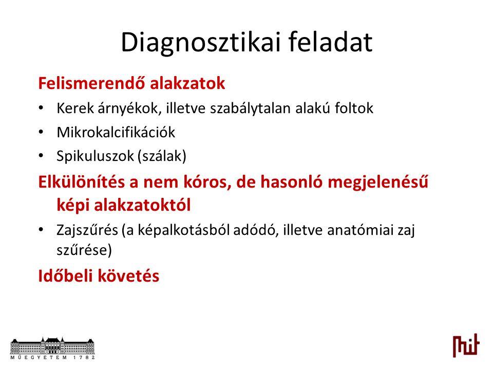 Diagnosztikai feladat