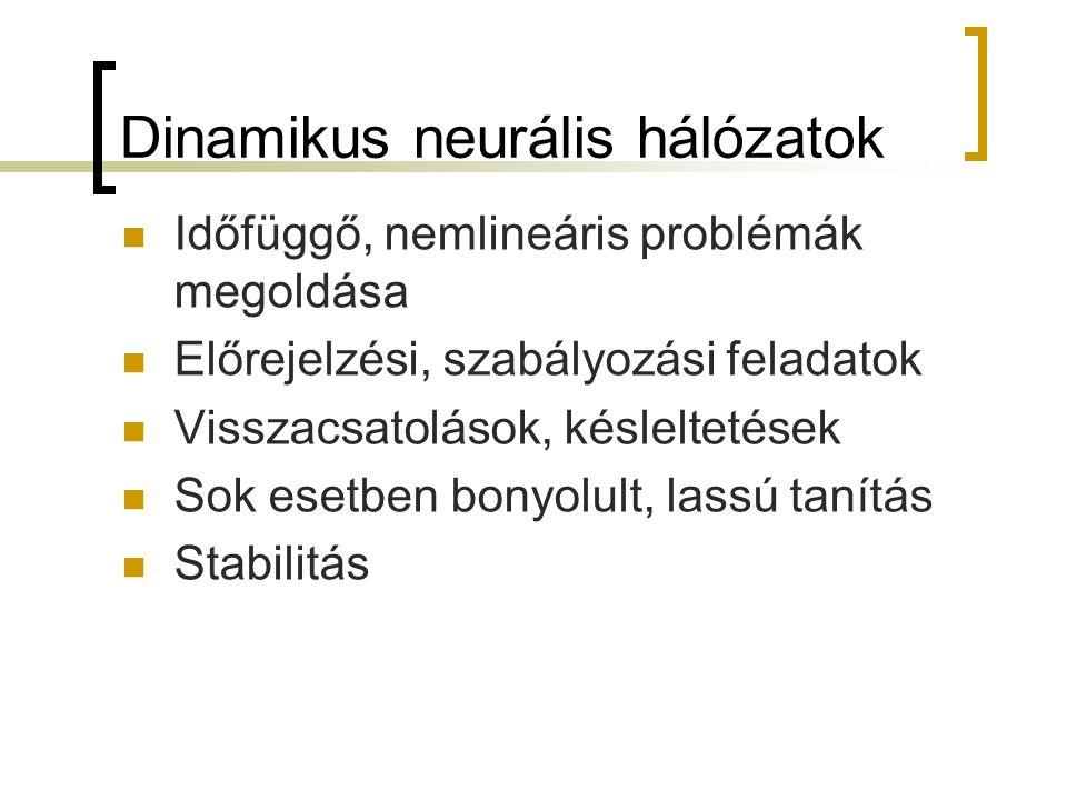 Dinamikus neurális hálózatok