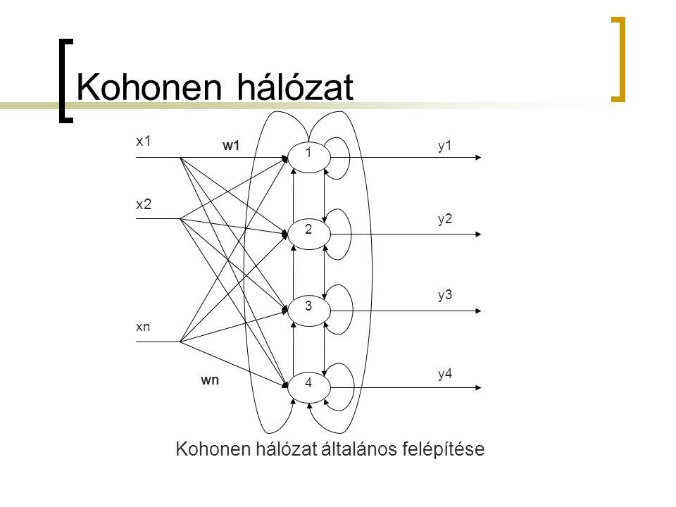 Kohonen hálózat általános felépítése