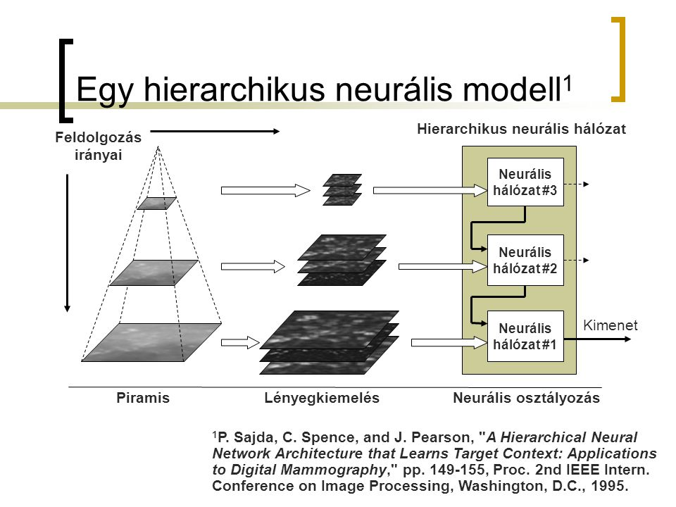 Egy hierarchikus neurális modell1