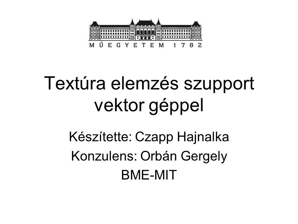 Textúra elemzés szupport vektor géppel