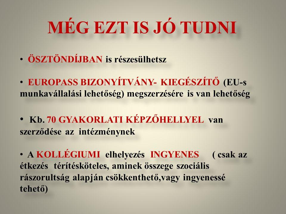 MÉG EZT IS JÓ TUDNI ÖSZTÖNDÍJBAN is részesülhetsz. EUROPASS BIZONYÍTVÁNY- KIEGÉSZÍTŐ (EU-s munkavállalási lehetőség) megszerzésére is van lehetőség.