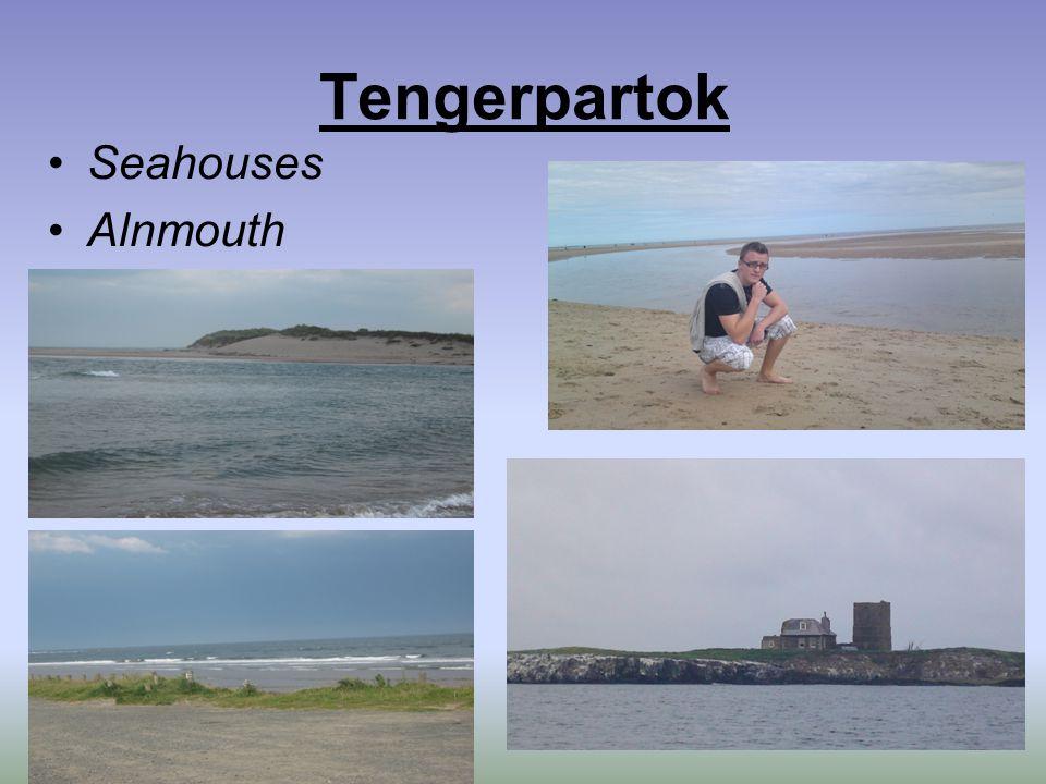 Tengerpartok Seahouses Alnmouth