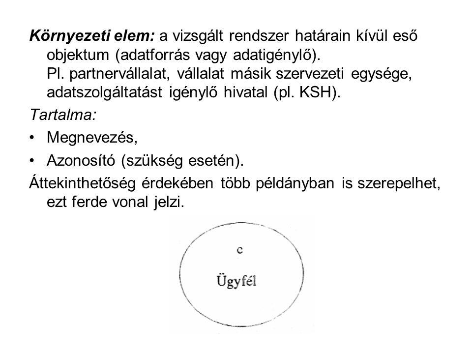 Környezeti elem: a vizsgált rendszer határain kívül eső objektum (adatforrás vagy adatigénylő). Pl. partnervállalat, vállalat másik szervezeti egysége, adatszolgáltatást igénylő hivatal (pl. KSH).