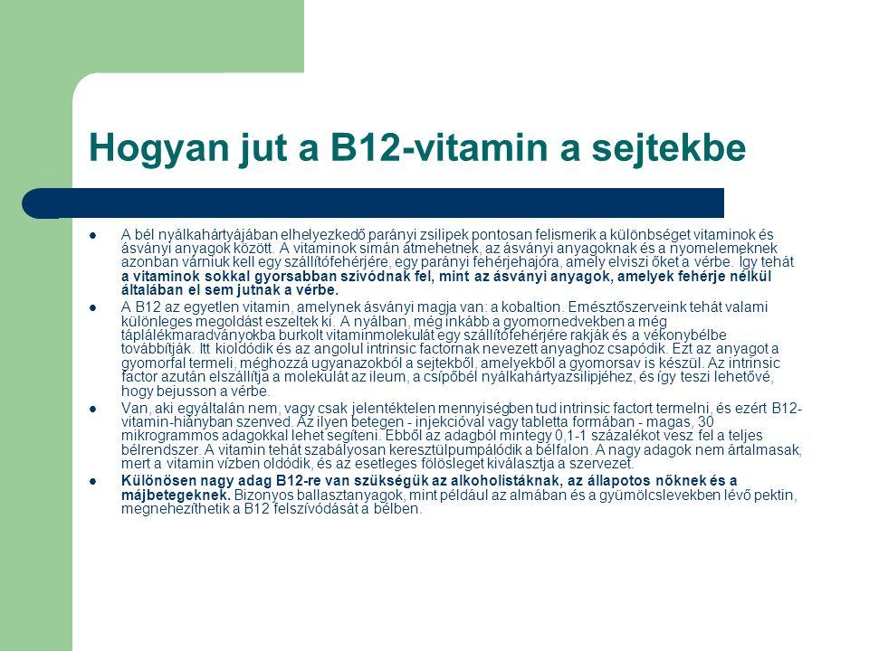 Hogyan jut a B12-vitamin a sejtekbe