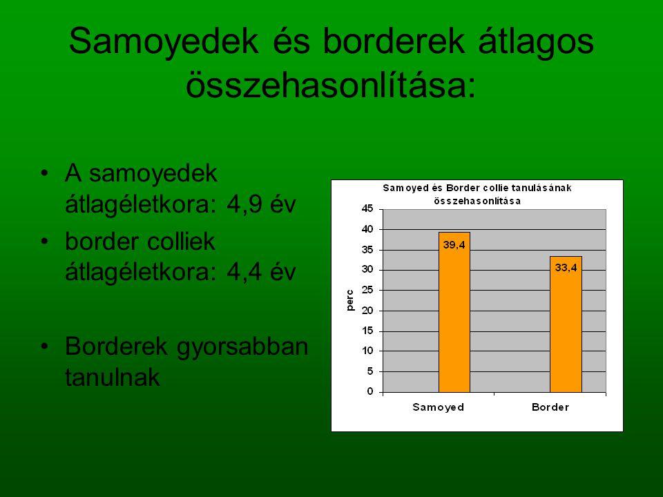 Samoyedek és borderek átlagos összehasonlítása: