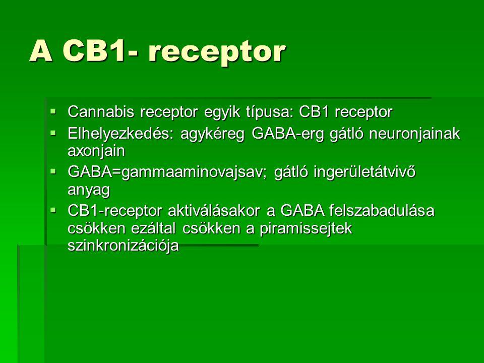 A CB1- receptor Cannabis receptor egyik típusa: CB1 receptor