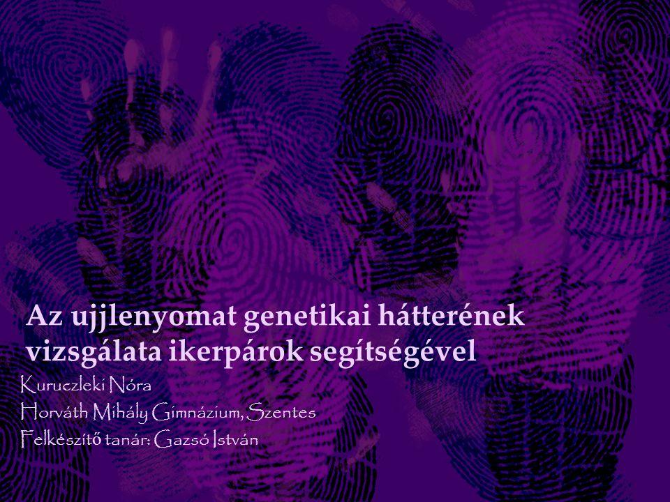 Az ujjlenyomat genetikai hátterének vizsgálata ikerpárok segítségével