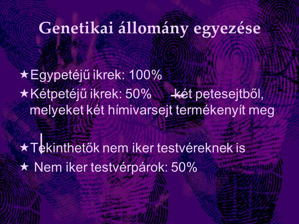 Genetikai állomány egyezése