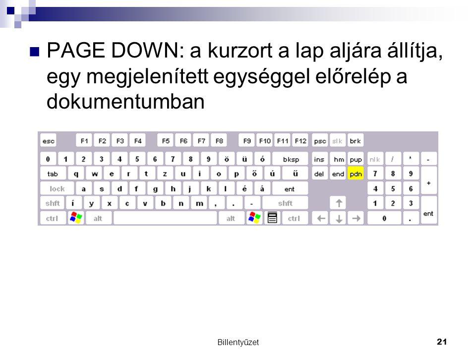 PAGE DOWN: a kurzort a lap aljára állítja, egy megjelenített egységgel előrelép a dokumentumban