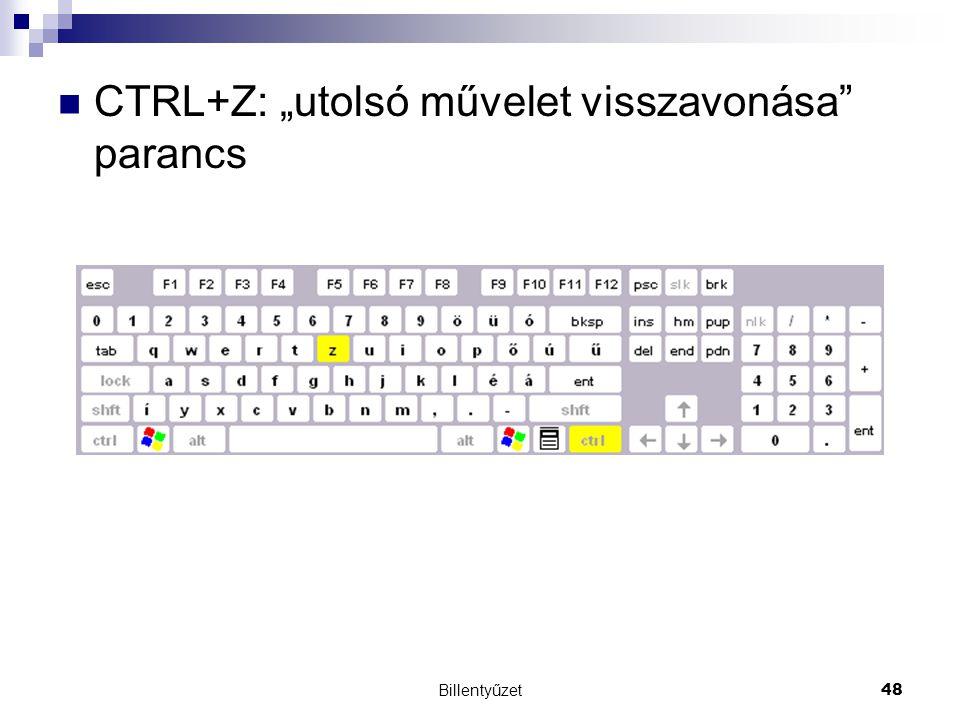 """CTRL+Z: """"utolsó művelet visszavonása parancs"""