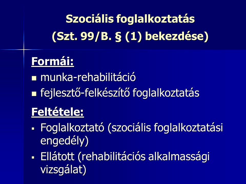 Szociális foglalkoztatás (Szt. 99/B. § (1) bekezdése)