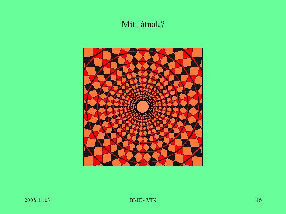Mit látnak 2008.11.03 BME - VIK