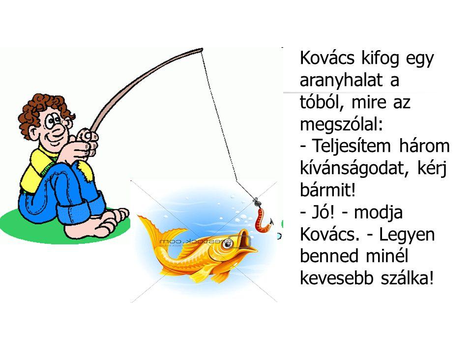 Kovács kifog egy aranyhalat a tóból, mire az megszólal: - Teljesítem három kívánságodat, kérj bármit.